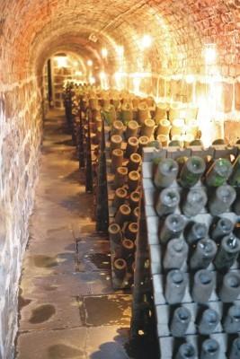 Jornal Vida Brasil Texas vinho-11 The Legacy of Champagne in Brazil Destaques News