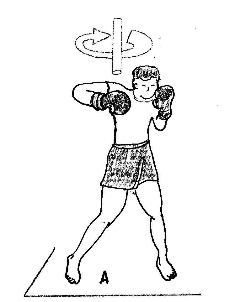 Jornal Vida Brasil Texas BOX-88888888888888888888888 O Boxeador Crônicas Destaques