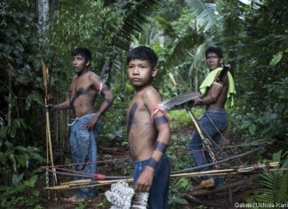 Jornal Vida Brasil Texas Amazonas-3-324x235 Home