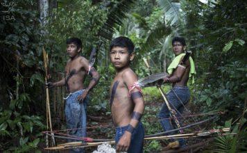 Jornal Vida Brasil Texas Amazonas-3-356x220 Home